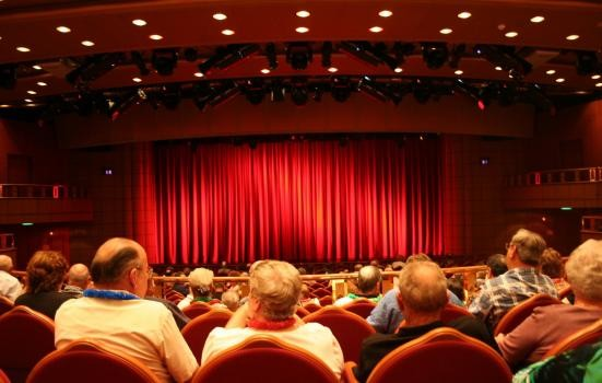 Image of Audience in theatre stalls