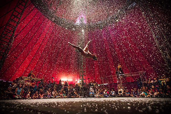 Image of trapeze act NoFit State Circus