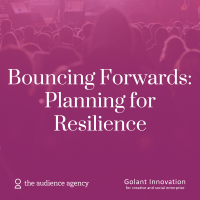 Image of Bouncing Forwards | Planning for Resilience